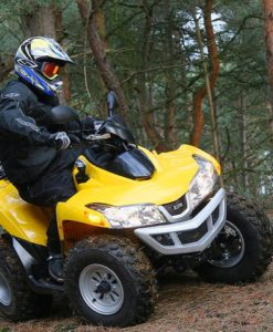 ATV QUADLANDER 300 S